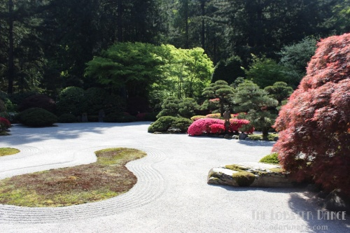 Portland Japanese Garden  | The Lobster Dance 17