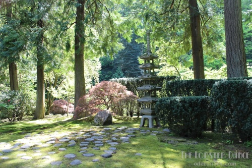 Portland Japanese Garden  | The Lobster Dance 3